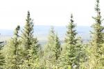 View the album Alaska Expedition